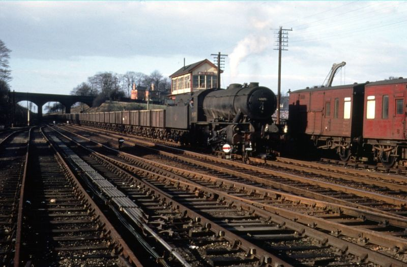 MELTON STEAM COLOUR