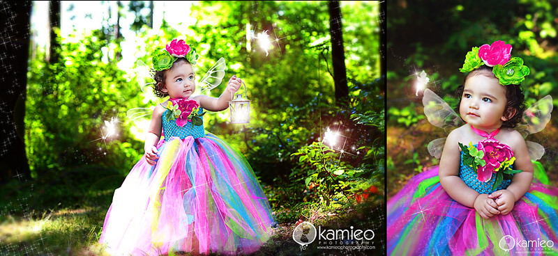 Fairy Mini's 2011