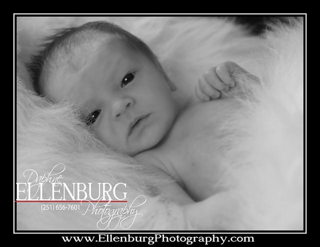 fb 11-07-01 Baby Waylon-25halobw