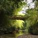Belas pontes nas estradas secundárias