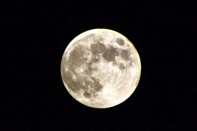 Moon Hax