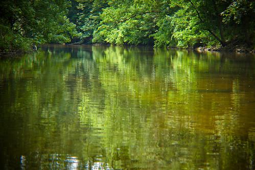 rogue river-6810.jpg