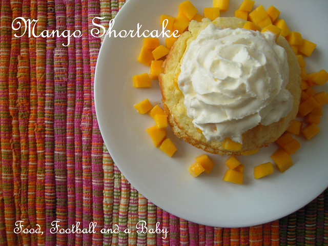 COPY Mango Shortcake 2