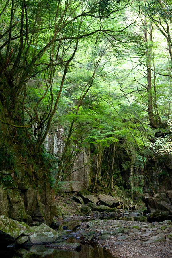 赤目四十八滝|三重県名張市