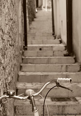 (Mikapuc) Tags: old scale bike sepia stairs stair grigio bikes bici scala vecchio bicicletta seppia manubrio manubri flickraward