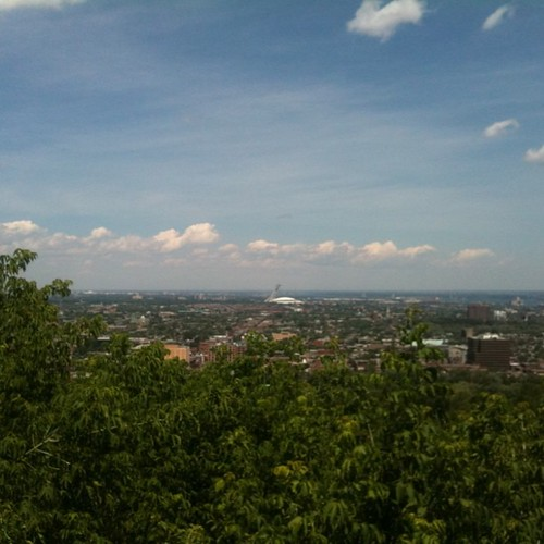 Today's cross off the life list item: walk all the way to the top of mont-royal. The view from halfway!