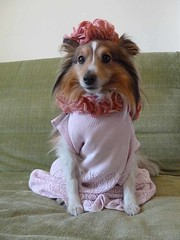 """Pink dress, hat & scarf • <a style=""""font-size:0.8em;"""" href=""""http://www.flickr.com/photos/55880040@N05/5967787796/"""" target=""""_blank"""">View on Flickr</a>"""