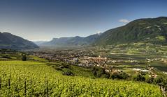Meran - Blick von Dorf Tirol