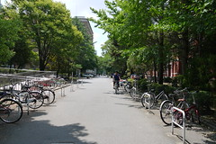 Kyoto University Cycling