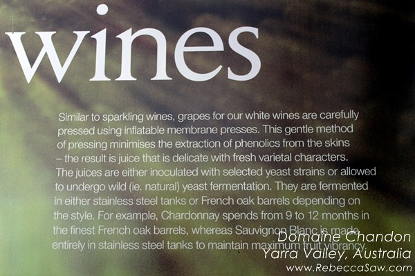domaine chandon yarra valley australia (10)