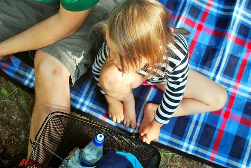 picnicp