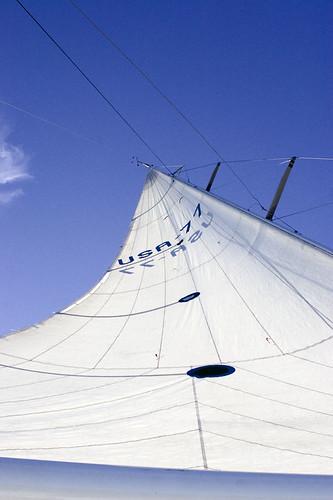 Dolphin Sail