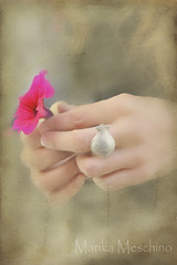 thoughts (Marika Meschino) Tags: mani fiore