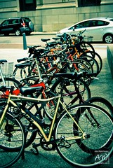 A Line of Bikes (Asha Waterhouse) Tags: street favorite blur color colors boston project photography nikon flickr state bokeh massachusetts tag perspective streetphotography busy filter shooting asha nikkor tamron effect comment waterhouse facebook lightroom preset bostonmassachusetts presets twitter adobelightroom d3000 presetting nikond3000 ashawaterhouse moderndaydesigner ashawaterhousephotography