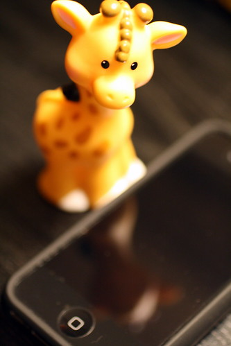 [209/365] Giraffe Reflections by goaliej54