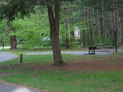 (Davidson River Campground) Tags: camping camp vacation electric river outdoors tents fishing education hiking peaceful campfire retreat waterfalls biking campground tubing forests campsite secluded primitive rvs usforestservice recreationvehicle environmentaleducation