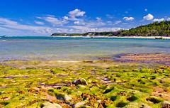 Marea Baixa (Arte, Fotografa y Diseo) Tags: blue winter sea brazil sky praia beach azul mar holidays playa bahia vacaciones clubmed trancoso feiras praiadoespelho cilelo july2011