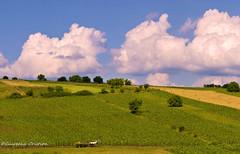 Romania Danesti (ciureanu) Tags: panorama europe farm country panoramic east vision romania romantic easterneurope panoramma