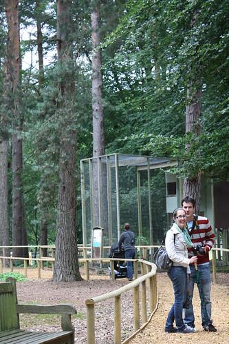 New Forest Wildlife Park - Wandering around