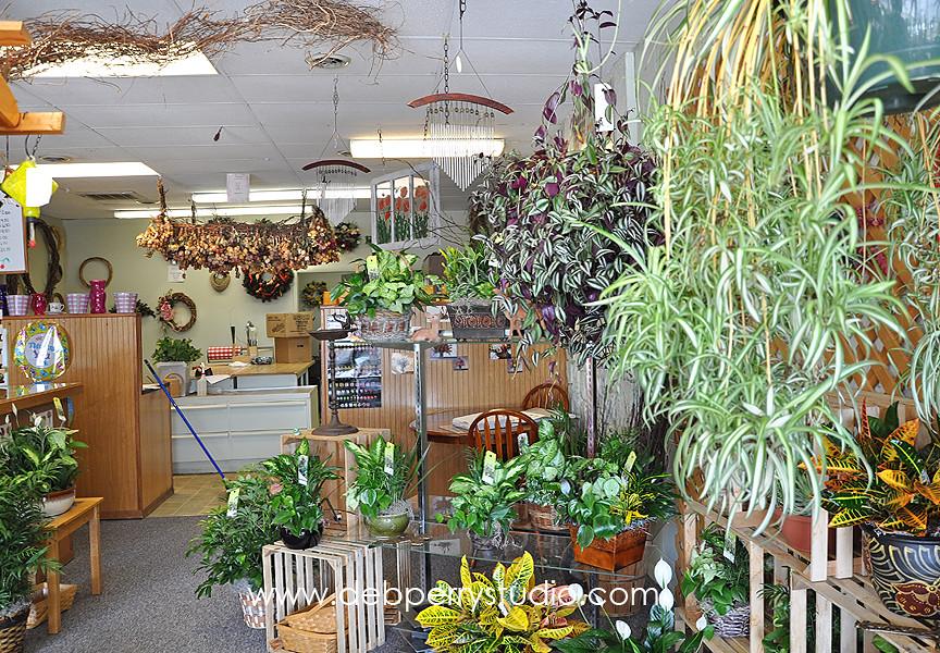 floral shop 6