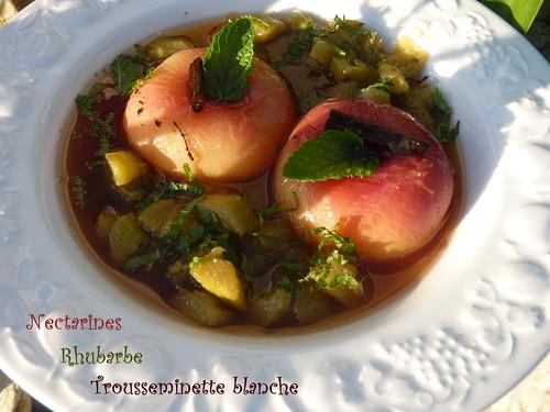 soupe de rhubarbe et nectarines à la trousseminette