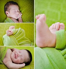 Lorenzo (Pmela Dias Fotografia) Tags: newborn nascido recem recemnascido