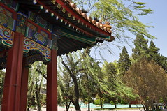 北海公园 (16) (卢芳思) Tags: beijing pechino cina china zhongguo park beijingparks yuanmingyuan beihaigongyuan北京,中国,北京公元,北海公园,圆明园 explored natgeofacesoftheworld religion religious praying prayer sacred secret nikon