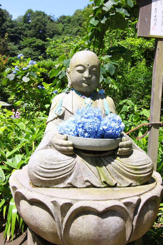 Kita Kamakura Hydrangea spot (8)