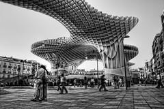 Parasol HDR BN (Zu Sanchez) Tags: architecture photo sevilla spain photographer seville parasol hdr  metrosol
