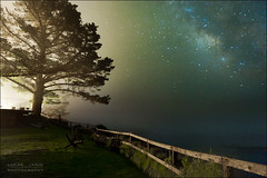Light and milky way (Lucas Janin | www.lucasjanin.com) Tags: california longexposure blue light sky usa plant color tree green grass night plante star chair nikon outdoor lumire bigsur vert ciel 24mm nikkor insomnia nuit arbre couleur herbe lightroom longueexposition insomnie f32 voielacte 300sec lightroom3 nikond700 iso5000 lucasjanin afsnikkor2470mmf28ged