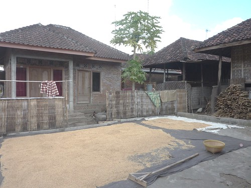 Indo 11-Lombok-Kuta (39)