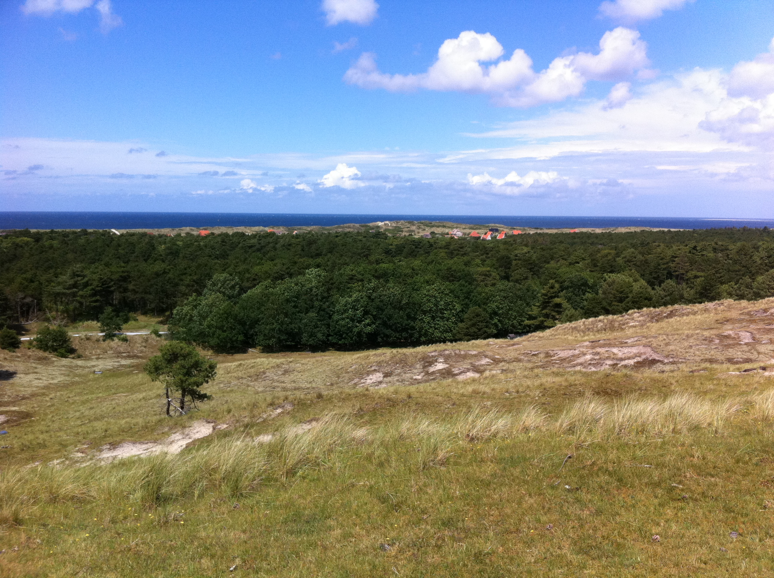 View to the north of Vlieland