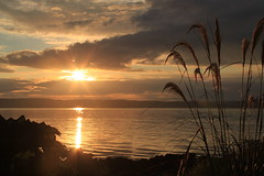 Sunset over Kintyre (shotlandka) Tags: sunset sea nature evening view ngc arran isleofarran kintyre   catacol   canoneos500d  platinumheartaward  mygearandmebronze mygearandmegold mygearandmeplatinum mygearandmediamond ringexcellence dblringexcellence tplringexcellence eltringexcellence artistoftheyearlevel7