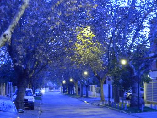 Azul by Carlos Navarro C.