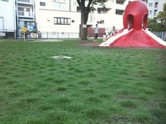 たこ公園、芝生あおあお! #ebisu