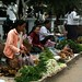 Mercado matutino. De vegetais, até ratos e esquilo