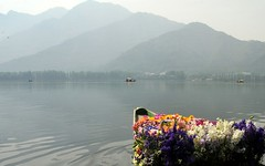 Kashmir-India (D.N.A.SHINE) Tags: india dallake kashmirindia deepaknashine