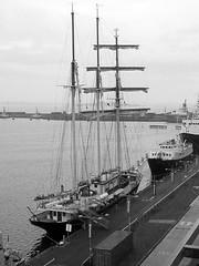 Gulden BW (Little Boffin (PeterEdin)) Tags: city blackandwhite bw white black monochrome docks boats lumix