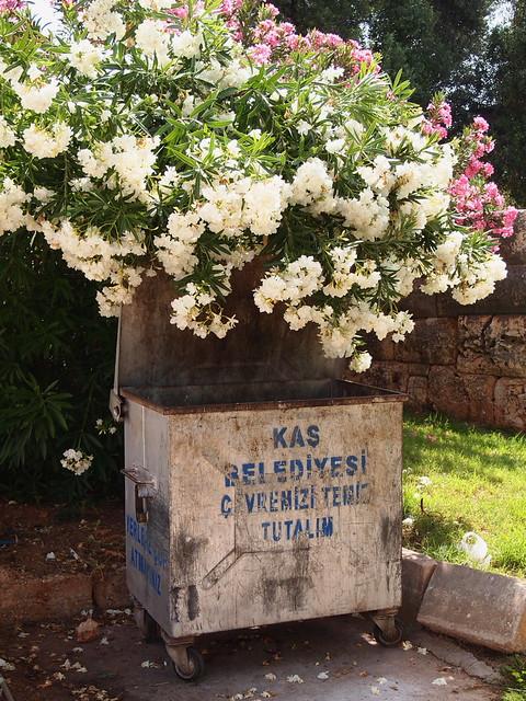 Kas的垃圾桶,配上夾竹桃花也很漂亮