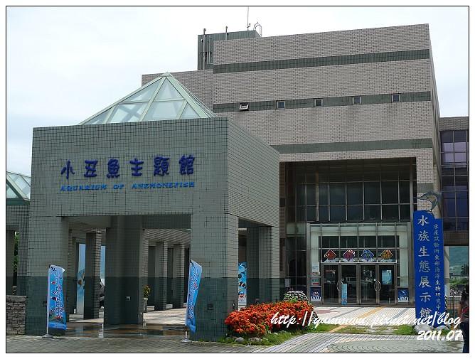 110711小丑魚主題館 (3)