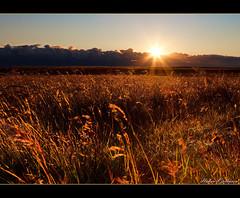 Magical midnight sun (Hkon Kjllmoen, Norway) Tags: sun beautiful beauty norway canon ngc natur tagged midnight 5d magical soe hkon mkii norsk midnattsol rst blueribbonwinner vakker anawesomeshot fotocompetitionbronze dblringexcellence hkonkjllmoen wwwkjollmoencom kjllmoen