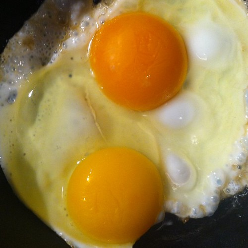 Difference in egg yolk color