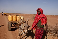 Travelling to get water (IFRC) Tags: africa red water cross kenya drought horn ifrc barmil