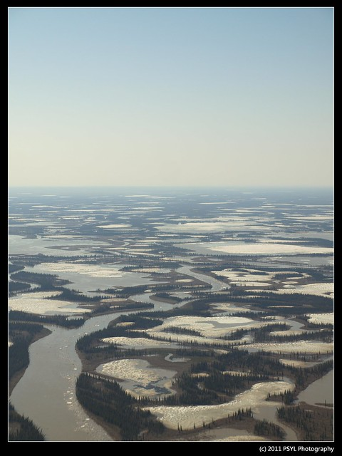 Mackenzie Delta