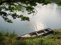 PhoTones Works #477 (TAKUMA KIMURA) Tags: trees water grass river boat  kimura ep3     takuma     mzd17 photones
