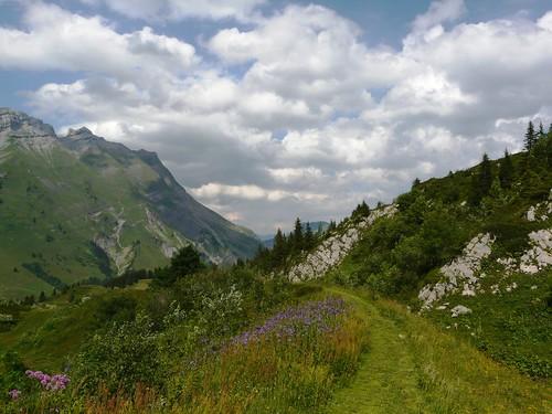 Chemin de descente - Col des Aravis 044
