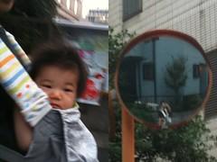 夕方散歩 (7/23)