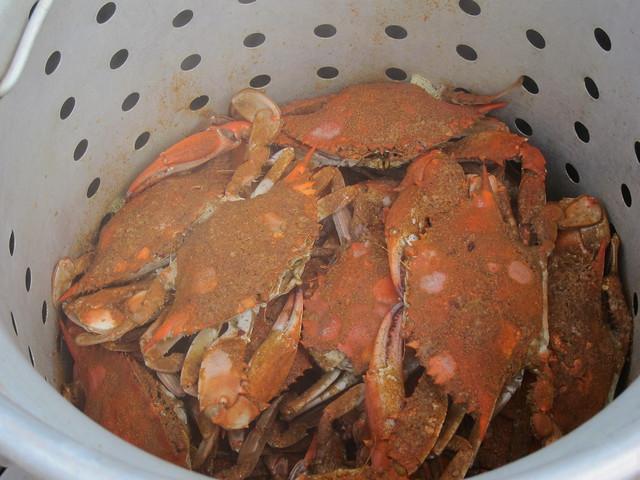 Crabbing et al 064