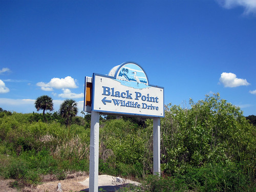 Black Point Wildlife Drive Sign