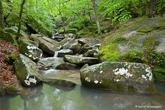 Burden Falls Creek in Spring (schwaegler) Tags: creek waterfall illinois spring il harrisburg shawneenationalforest burdenfalls